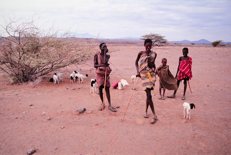 Samburus mit Herde