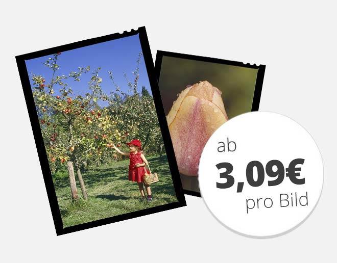 Großformate digitalisieren ab 3,09 € pro Bild